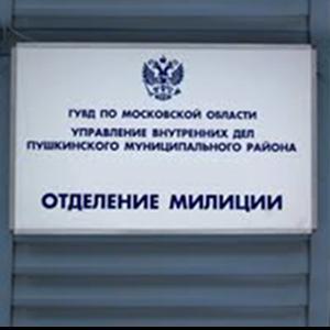 Отделения полиции Горняка